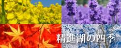 精進湖の四季